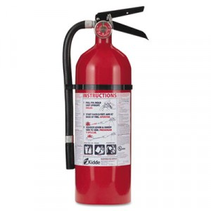 Pro 210 Consumer Fire Extinguisher, 2-A,10-B