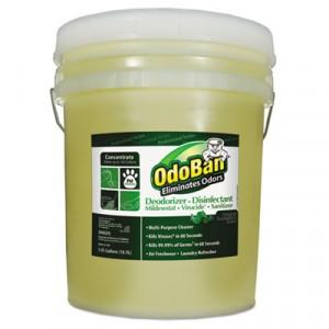 Professional Series Deodorizer Disinfectant, 5gal Pail, Eucalyptus Scent