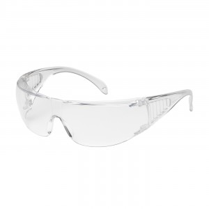 Ranger Clr Lens AS Clr Tmpls OTG Visitor Specs CSA