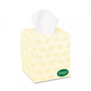 SURPASS BOUTIQUE Recycled Facial Tissue, 2-Ply
