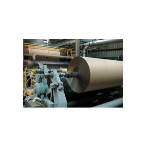 "Paper Caseline 48""x200YD (600') 30/30/30 72#/RL 25/PLT"