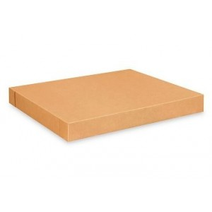 """LID 49.25x41.25x4"""" For Kraft Corrugated Container 5/280"""